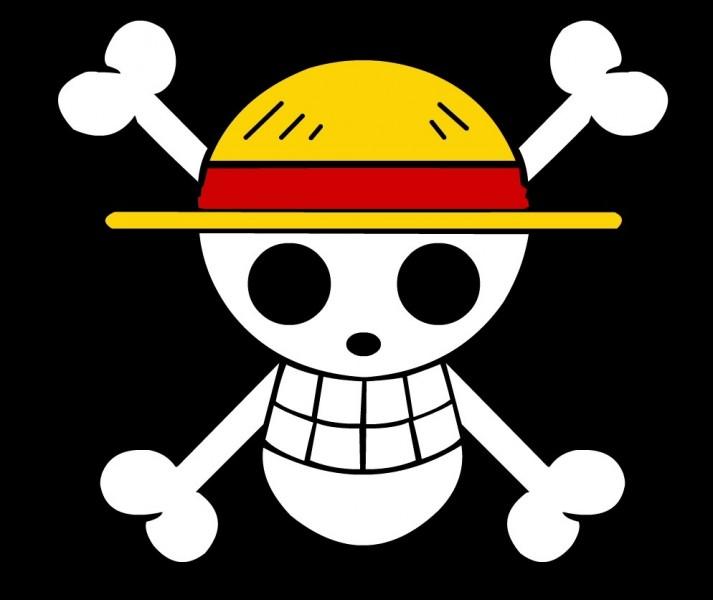 Quel est le bon ordre des personnages qui ont rejoint l'équipage au Chapeau de Paille ?