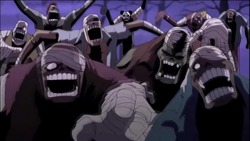 Que s'est-il passé après que Luffy ait absorbé les ombres de Thriller Bark ?