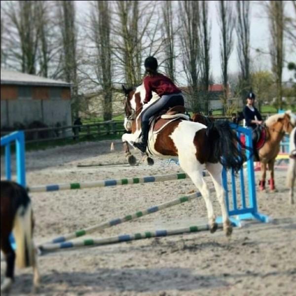Quel cheval monte le plus souvent Sonia ?