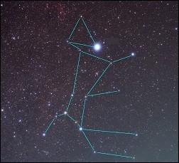L'étoile la plus brillante de notre ciel est nommée Alpha Canis Majoris. De quel animal, dont elle porte le nom, semble-t-elle éclairer la truffe ?