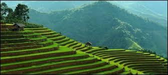 Quel pays borde le Vietnam au nord ?