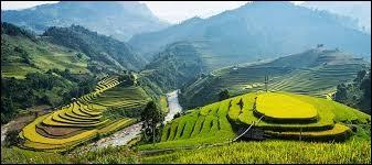 Quelle est la devise du Vietnam ?