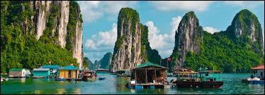 Quelle est la langue officielle du Vietnam ?