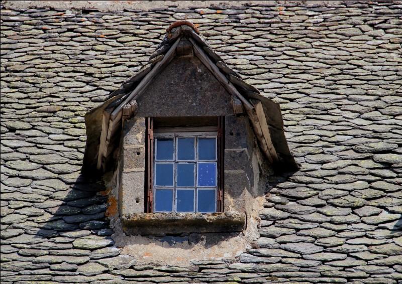 Comment se nomme cette ouverture couverte sur le versant d'un toit ?
