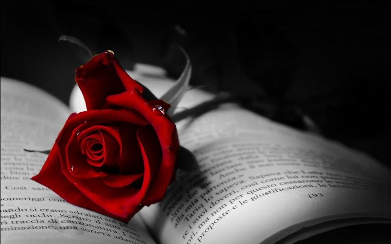 """Dans le roman """"Le rouge et le noir"""", quel est le métier du père de Julien Sorel ?"""