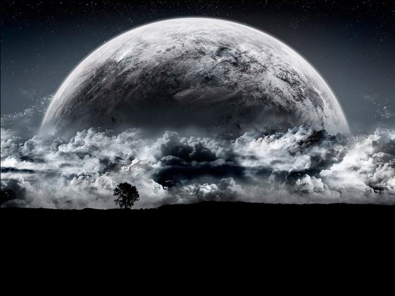 Qu'est ce que le noir de Campêche ?