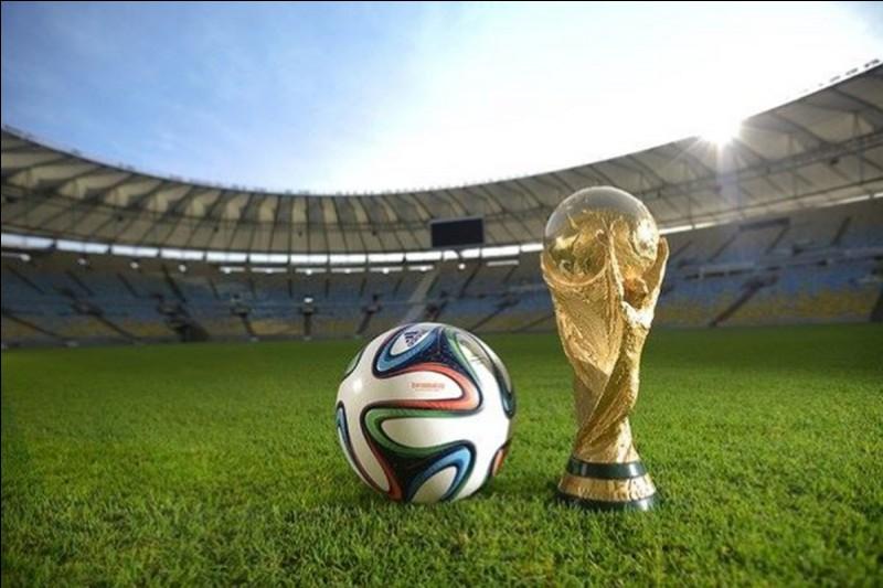 La Coupe - Où la Coupe du monde de football 2014 s'est-elle déroulée ?