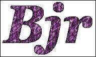 Que veut dire bjr ?