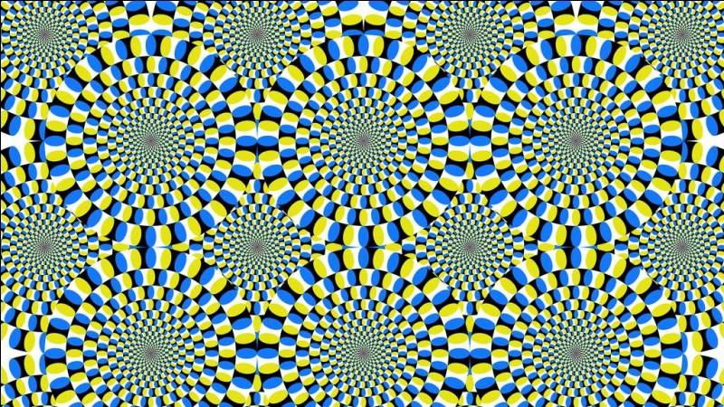 Pour vous mettre dans un état d'esprit favorable suivez des yeux les cercles composant une illusion d'optique conçue par un célèbre japonais. Quel est le nom de l'illusion ?