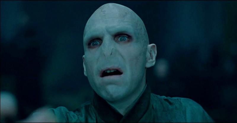 Voldemort a été vaincu par (...).