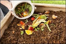 De combien le compost réduit-il le volume de notre poubelle ?