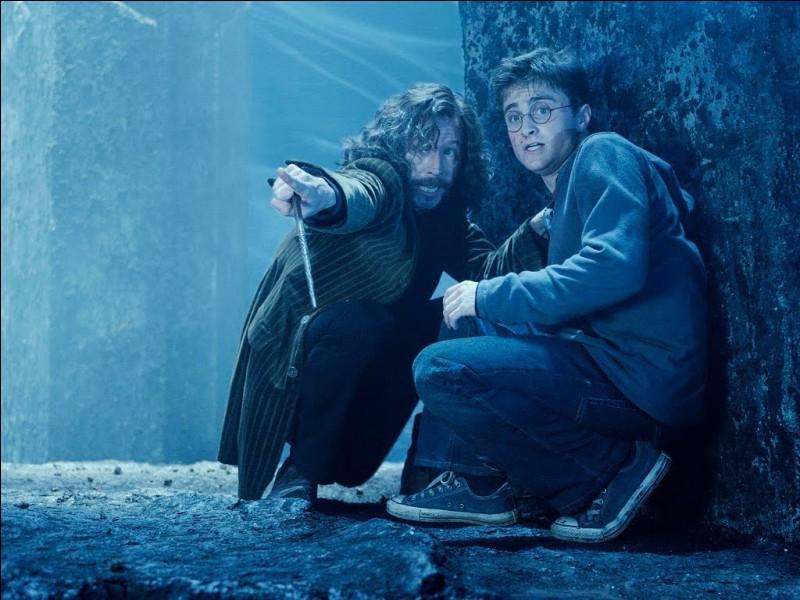 Comment Sirius appelle-t-il Harry pendant qu'ils se battent ?