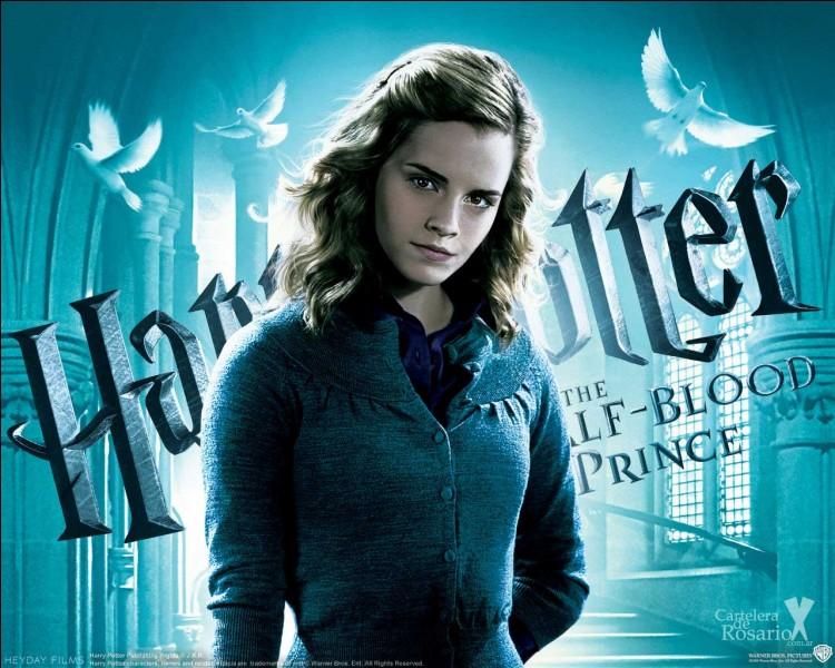 De qui Hermione tombe-t-elle amoureuse lors de sa 6e année ?