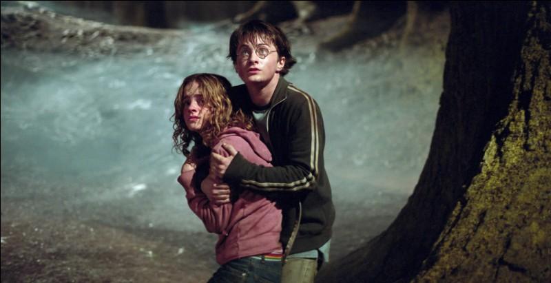 Avec qui se rend-elle dans le passé pour sauver Sirius des Détraqueurs et Buck ?