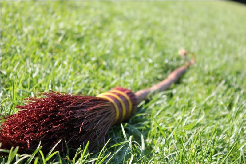 Que préférez-vous entre le quidditch ou le club des Bavboules ?