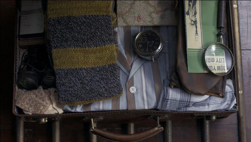 Que transporte Norbert dans sa valise ?
