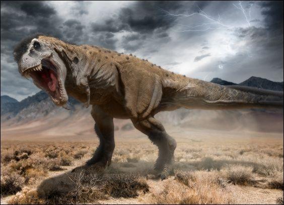 Le tarbosaure, son nom signifie...