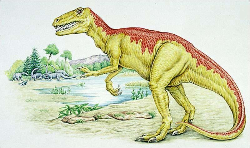 Maintenant découvrons des dinosaures carnivores qui portent des noms sympathiques comme le gasosaure, dont le nom signifie...