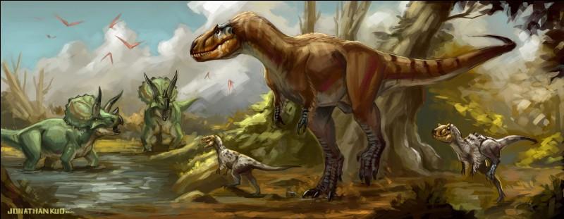 L'après les paléontologues, le tyrannosaure ne serait pas le seul tyran de l'âge des dinosaures. Voici le nanotyrannus, dont le nom signifie...