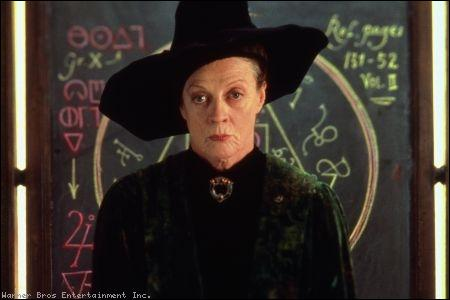 Un des professeurs d'Harry Potter, qui est-ce ?