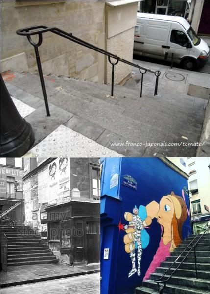 Allons « rue des degrés » !C'est une rue très particulière, aucun Parisien ne peut y loger ! En ce lieu, le baron de Batz rassembla plusieurs hommes pour tenter de faire évader Louis XVI avant son exécution ! Cette rue se situait sur une la « Butte aux Gravois » (XVIIe siècle).Quelles sont ses trois particularités ?