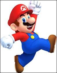 Pour toi, Mario c'est :