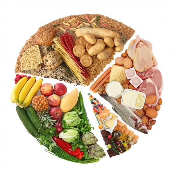 Que manges-tu le plus souvent ?
