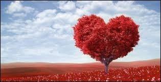 L'amour en culture générale