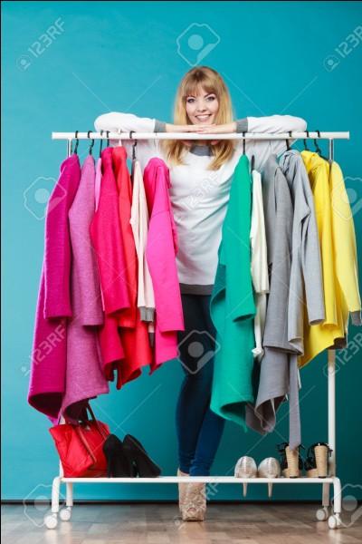 Tu t'habilles pour aller au travail, comme tous les jours. Que mets-tu ? (imagine que tu es une fille)...