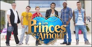 """Sur quelle chaîne est diffusée l'émission de télé-réalité """"Les Princes de l'amour"""" ?"""