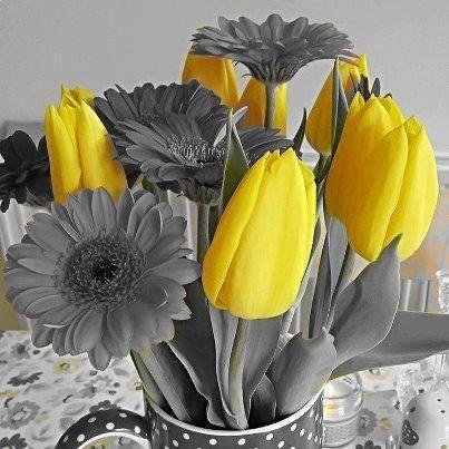 La culture générale est en fleurs !