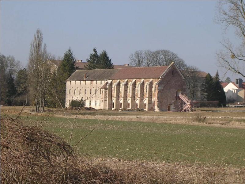 Qui fonda le monastère de Cîteaux en 1098 ?