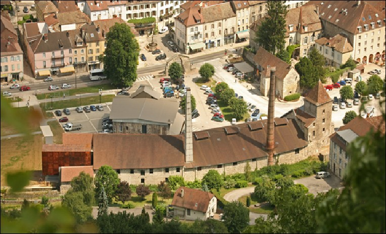 Qui échangea ses terres de Salins contre le comté de Chalon-sur-Saône en 1237 ?