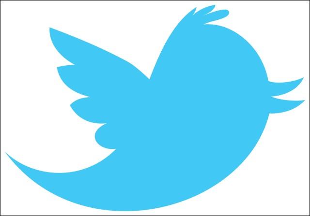 Ce premier oiseau représente un réseau social, lequel ?