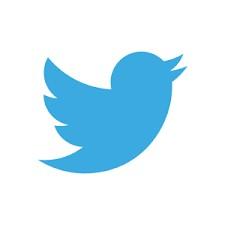 Les oiseaux dans les logos !