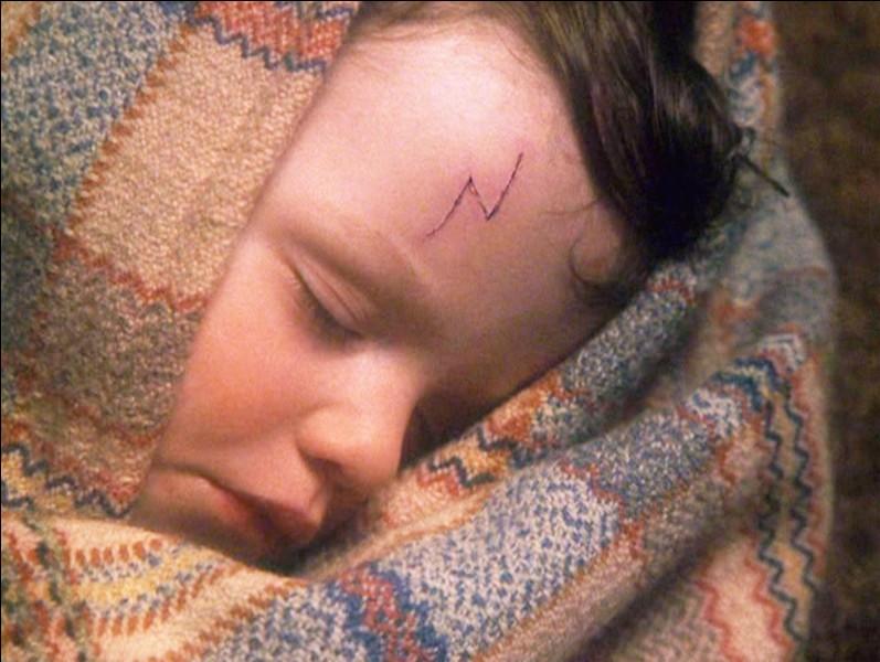 Avant son cauchemar avec Hagrid et les Dursley, depuis combien de temps la cicatrice de Harry ne lui avait-elle plus fait mal ?