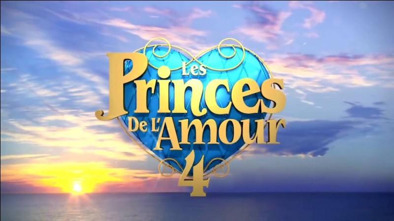Les Princes de l'amour 4