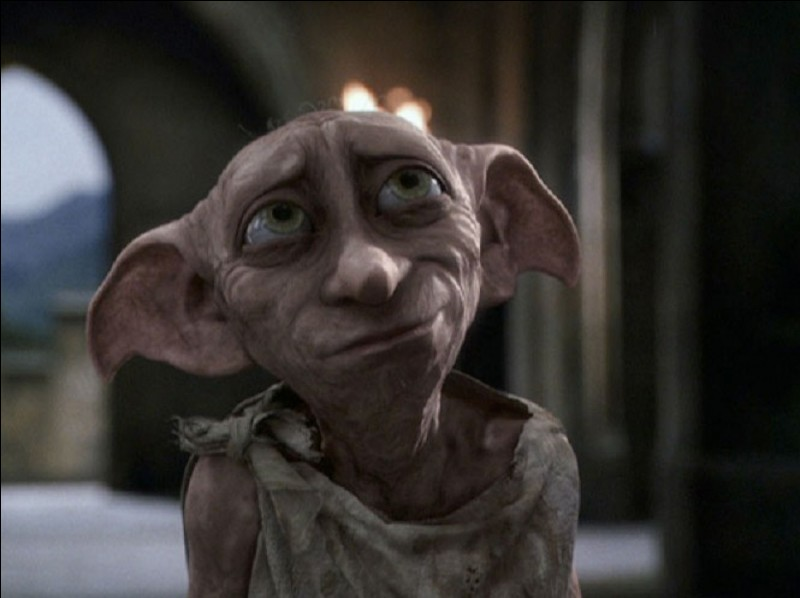 Dans le tome sept (partie 1), que dit Luna à Harry à la mort de Dobby ?