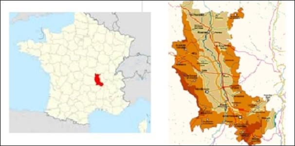 Si je vous dis que 5 867 Berger sont nés en France entre 1891 et 1915, dont 444 dans la Loire, je parle de la population de chiens de berger.