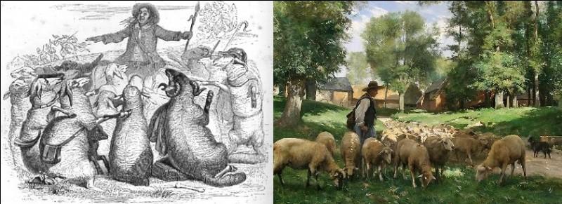 Quel animal est le pauvre Robin, ainsi désigné, dans une fable de La Fontaine ?