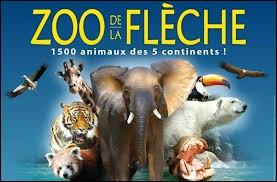 Le zoo de la Flèche se trouve dans le département de la Mayenne.
