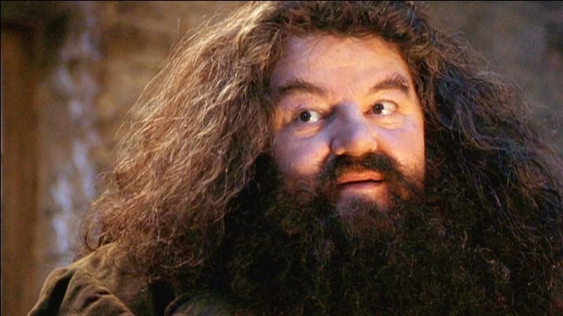 Comment le dragon de Hagrid s'appelle-t-il (avant que l'on découvre que c'est une femelle) ?