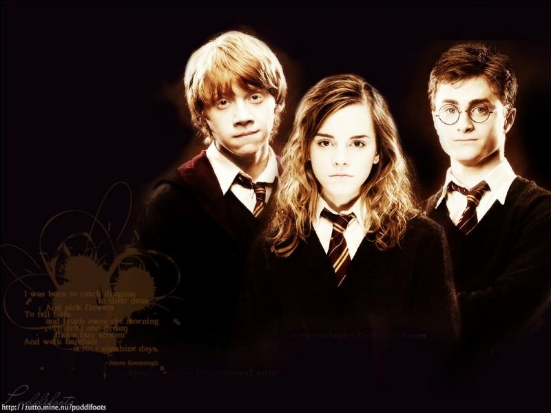 Comment Harry, Hermione et Ron appellent-ils Sirius pour que personne ne se doute qu'il est encore vivant ?