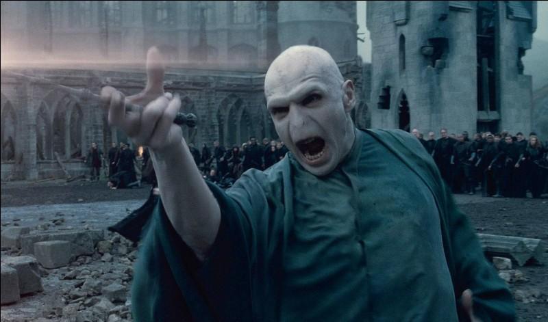 Qui a vu, en premier, Harry dans les bras d'Hagrid lorsqu'il feintait d'être mort au moment où Voldemort allait leur annoncer qu'il l'avait tué ?