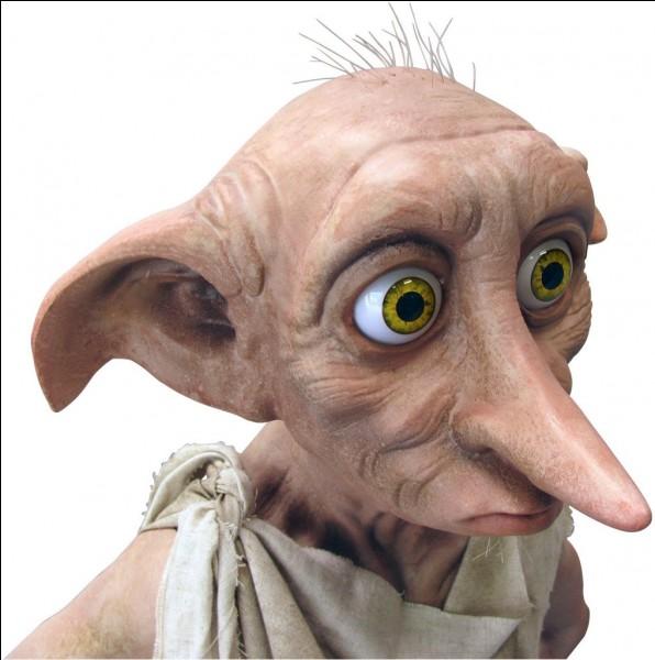 Comment Dobby est-il libéré des Malefoy ?
