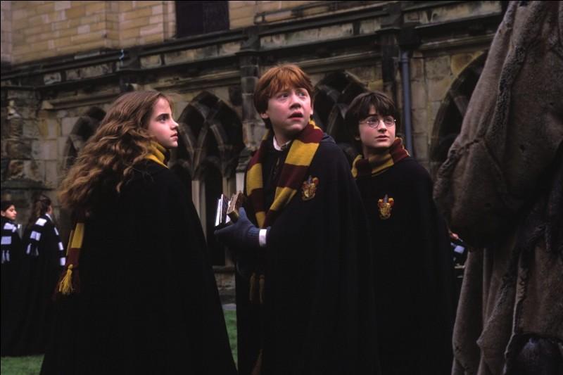 Comment Fumseck a-t-il soigné Harry ?