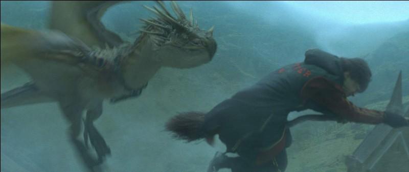 Quel livre Hermione consulte-t-elle pour aider Harry pour sa première tâche (thème : dragon) ?