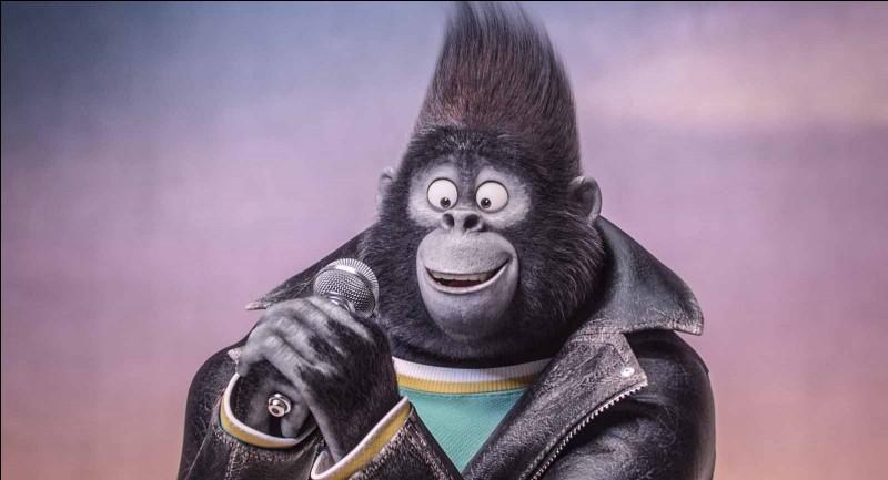 Quel est le métier du père de Johnny, le gorille ?Ce jeune passionné de musique ne voudra pas suivre le même chemin que son père, ce qui engendre la colère de ce dernier.