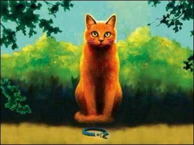 Dans le premier livre, Nuage de Feu tombe amoureux d'une chatte. Laquelle ?