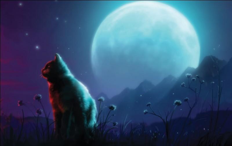"""Selon les Anciens, quel clan possède un plateau où """"le vent froid qui y souffle leur glace le cœur"""" ?"""